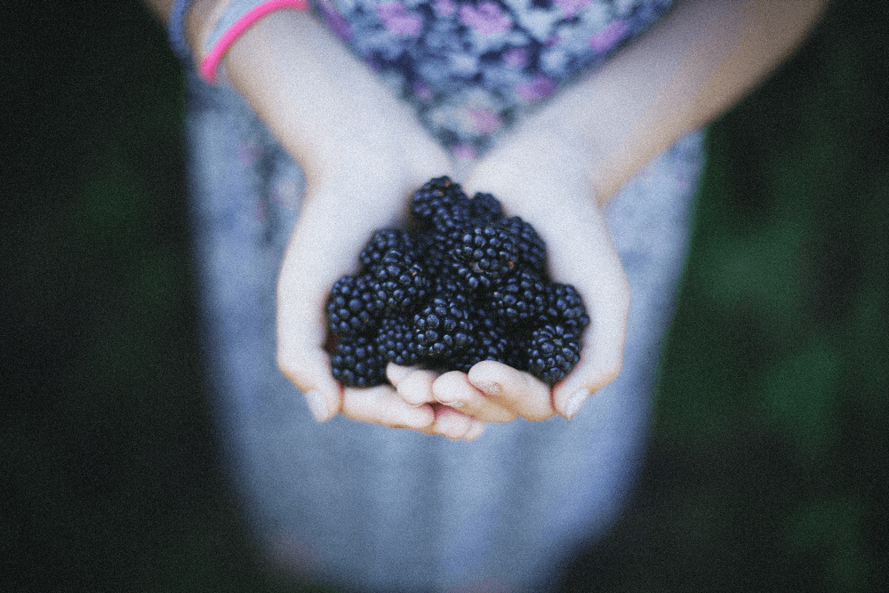 Fruits and vegetables good for the lungs-Keephumanity  research-blackberry