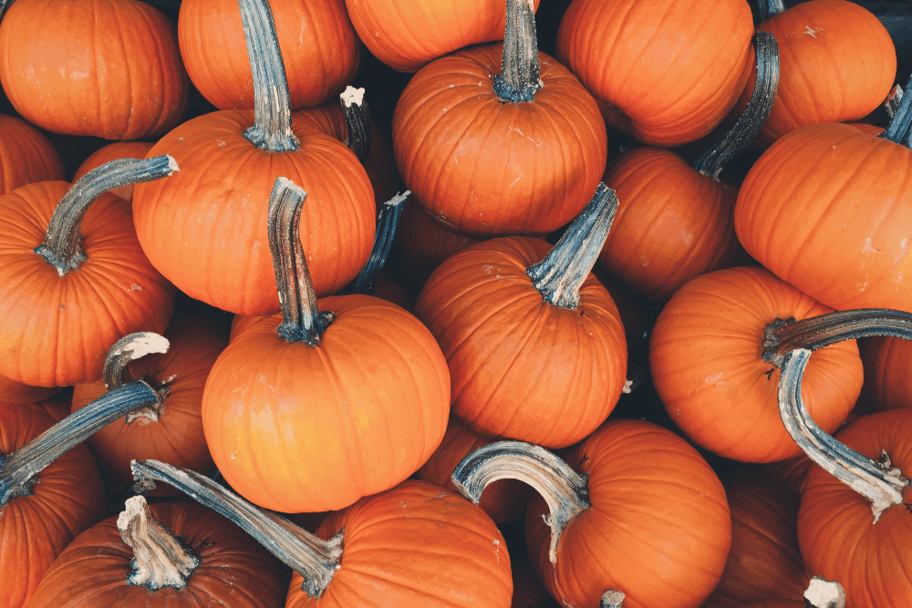 Fruits and vegetables good for the lungs-Keephumanity  research-pumpkin